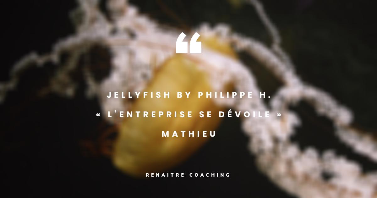JellyFish by Philippe H. | « L'entreprise se dévoile » | Episode : Mathieu